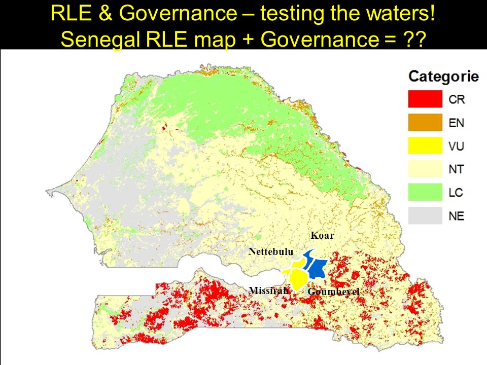 Missirah Goumbeyel Nettebulu Koar RLE & Governance – testing the waters.