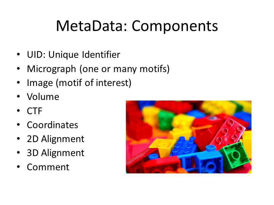 MetaData: Components UID: Unique Identifier Micrograph (one or many motifs) Image (motif of interest) Volume CTF Coordinates 2D Alignment 3D Alignment Comment