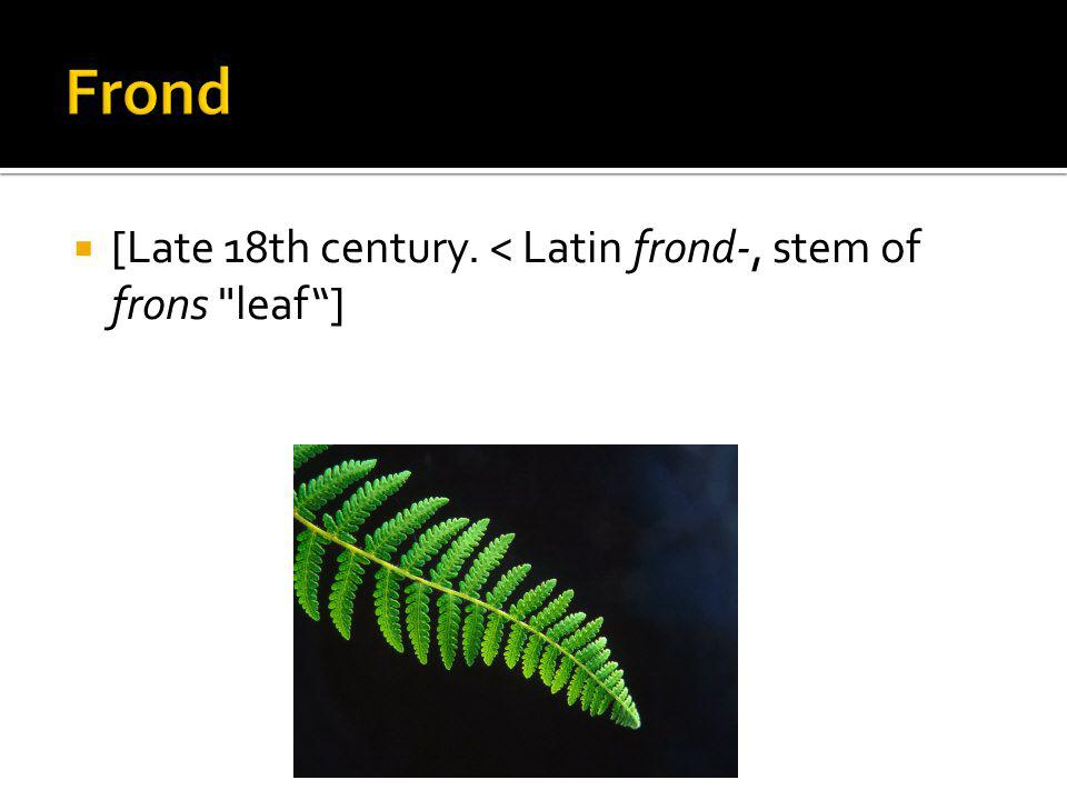 [Late 18th century. < Latin frond-, stem of frons leaf]