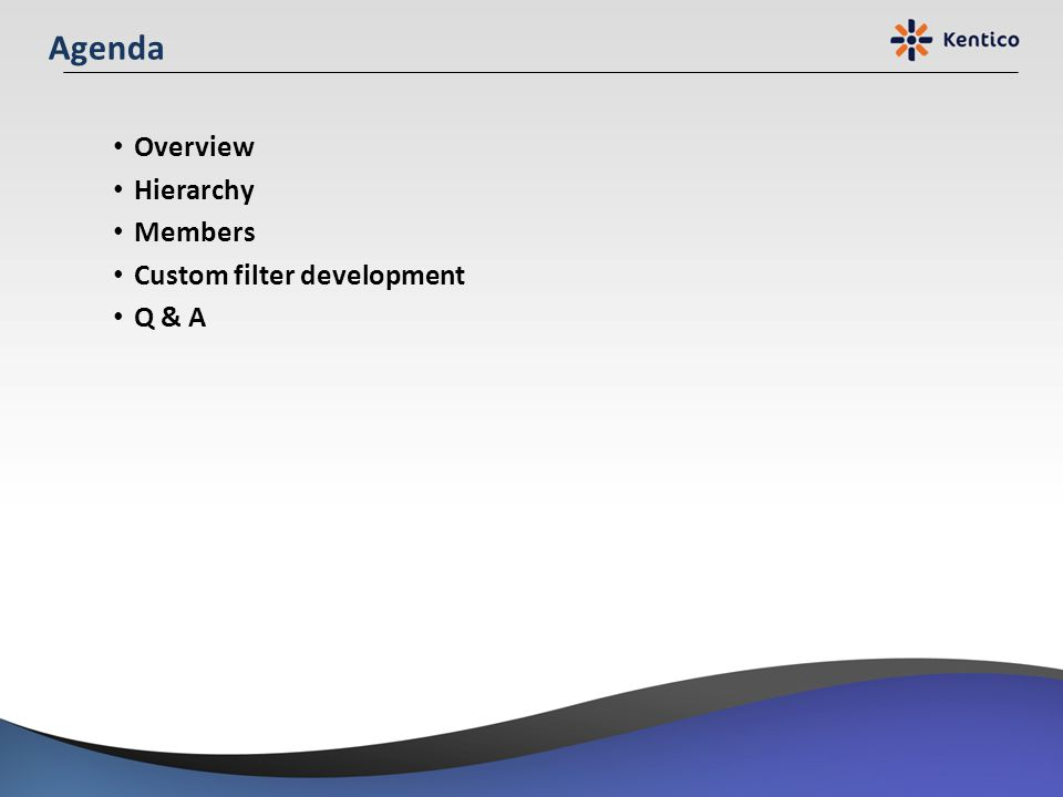 Agenda Overview Hierarchy Members Custom filter development Q & A