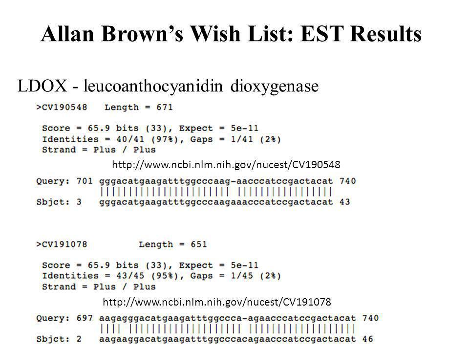 LDOX - leucoanthocyanidin dioxygenase http://www.ncbi.nlm.nih.gov/nucest/CV091044 http://www.ncbi.nlm.nih.gov/nucest/CV190548 http://www.ncbi.nlm.nih.gov/nucest/CV191078 Allan Browns Wish List: EST Results