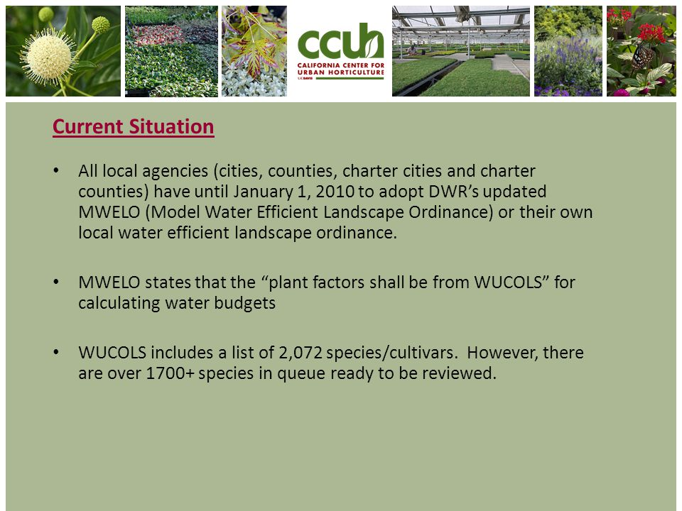 Current Situation All local agencies (cities, counties, charter cities and charter counties) have until January 1, 2010 to adopt DWRs updated MWELO (Model Water Efficient Landscape Ordinance) or their own local water efficient landscape ordinance.