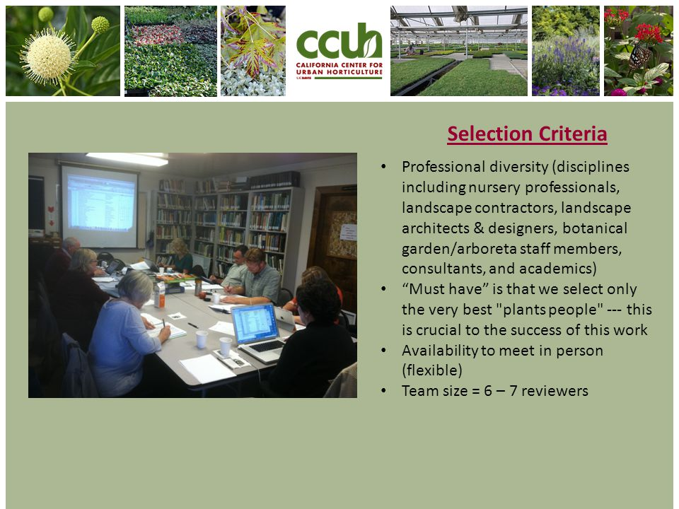 Selection Criteria Professional diversity (disciplines including nursery professionals, landscape contractors, landscape architects & designers, botanical garden/arboreta staff members, consultants, and academics) Must have is that we select only the very best plants people --- this is crucial to the success of this work Availability to meet in person (flexible) Team size = 6 – 7 reviewers