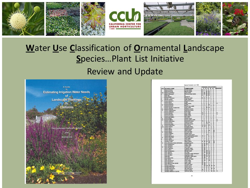 Water Use Classification of Ornamental Landscape Species…Plant List Initiative Review and Update