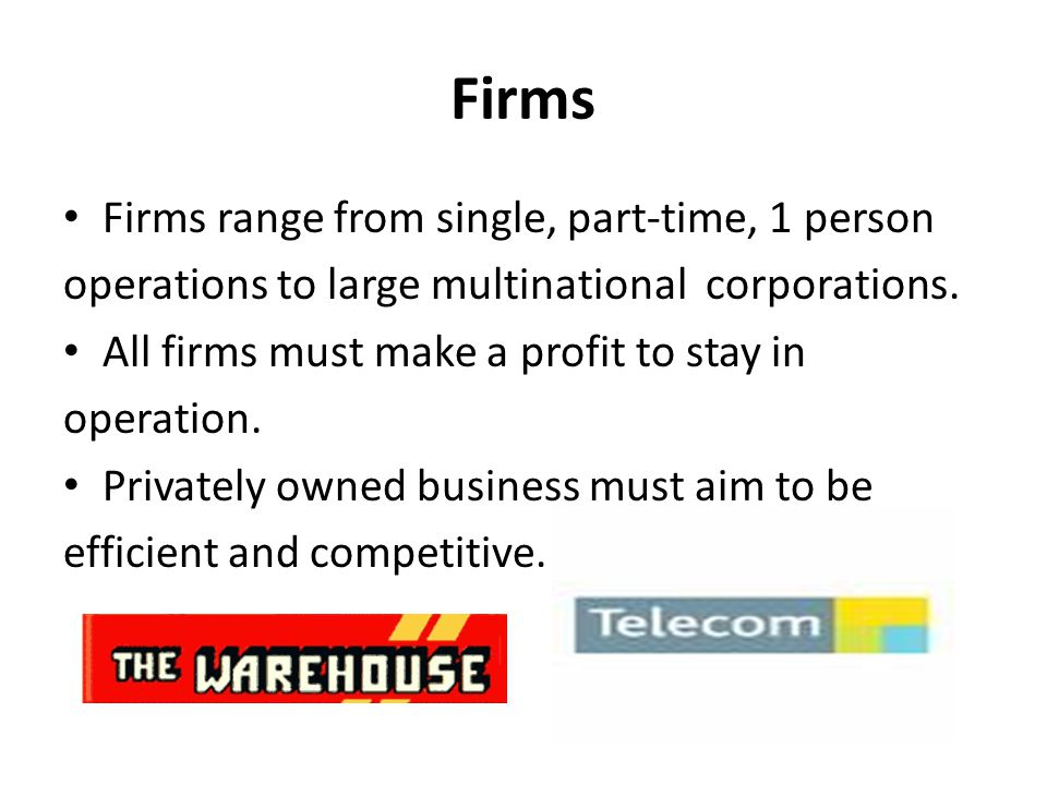 Firms Firms range from single, part-time, 1 person operations to large multinational corporations.