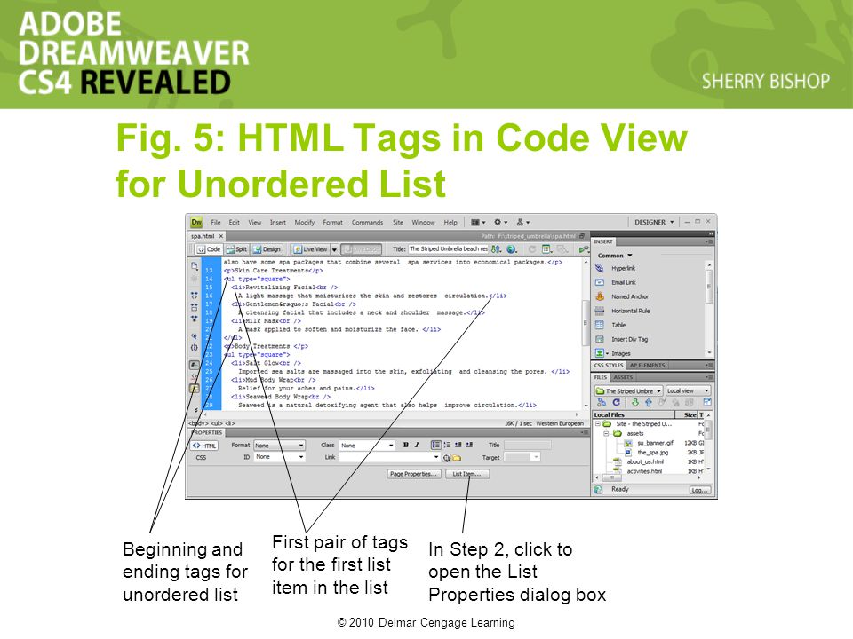 © 2010 Delmar Cengage Learning Fig. 5: HTML Tags in Code View for Unordered List Beginning and ending tags for unordered list First pair of tags for t