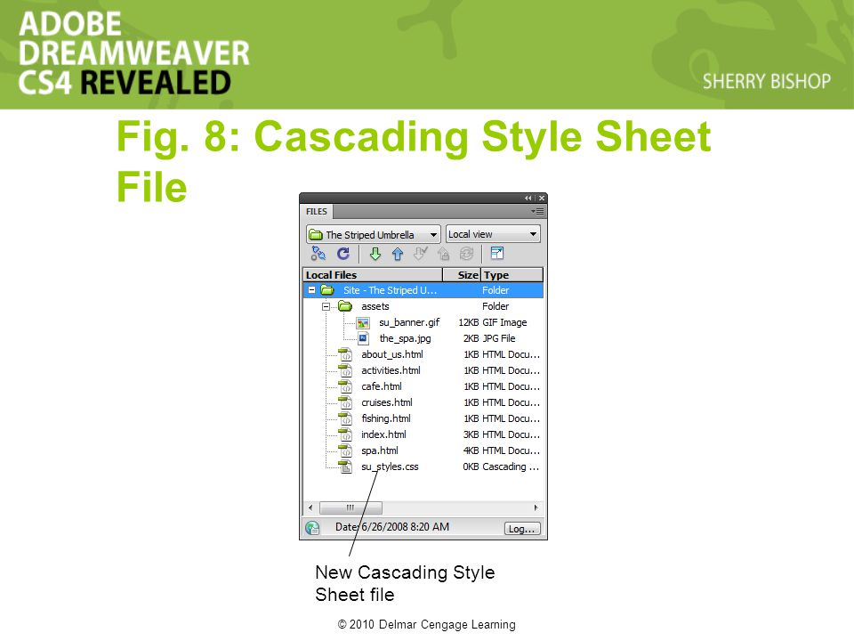 © 2010 Delmar Cengage Learning Fig. 8: Cascading Style Sheet File New Cascading Style Sheet file