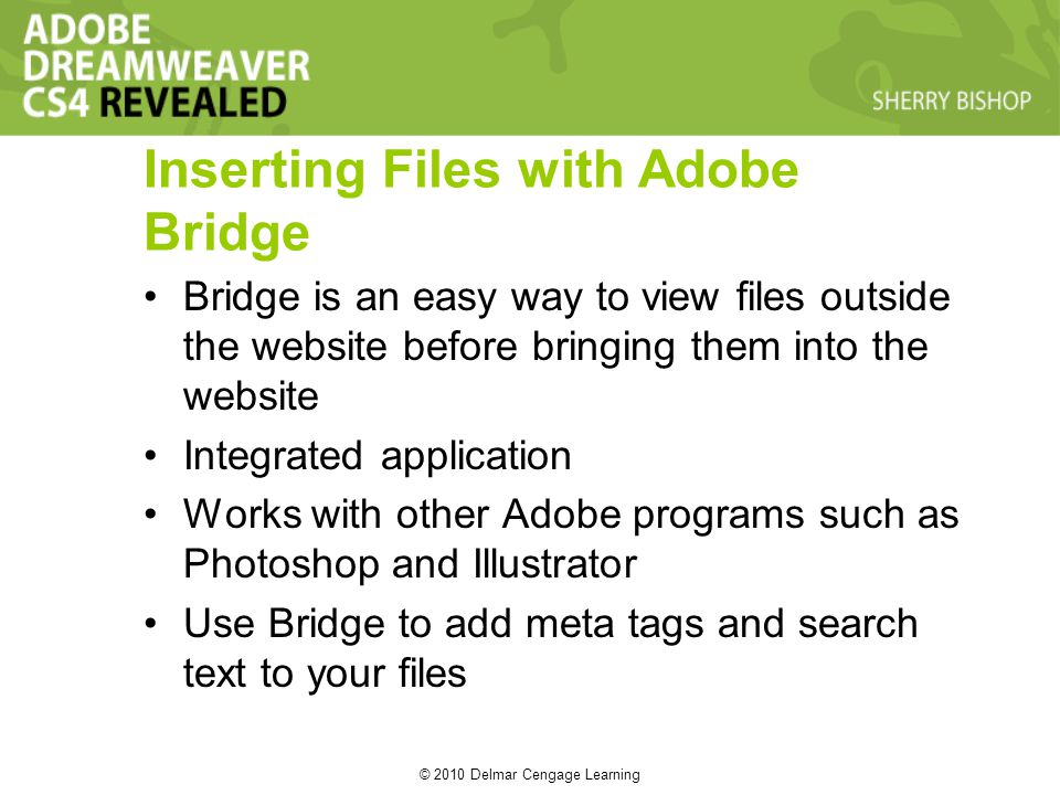 © 2010 Delmar Cengage Learning Inserting Files with Adobe Bridge Bridge is an easy way to view files outside the website before bringing them into the