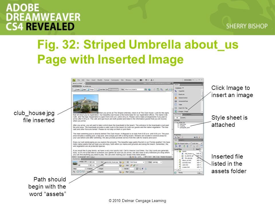 © 2010 Delmar Cengage Learning Fig. 32: Striped Umbrella about_us Page with Inserted Image club_house jpg file inserted Path should begin with the wor