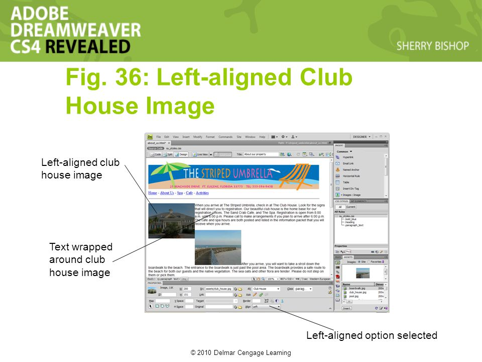 © 2010 Delmar Cengage Learning Fig. 36: Left-aligned Club House Image Left-aligned club house image Text wrapped around club house image Left-aligned