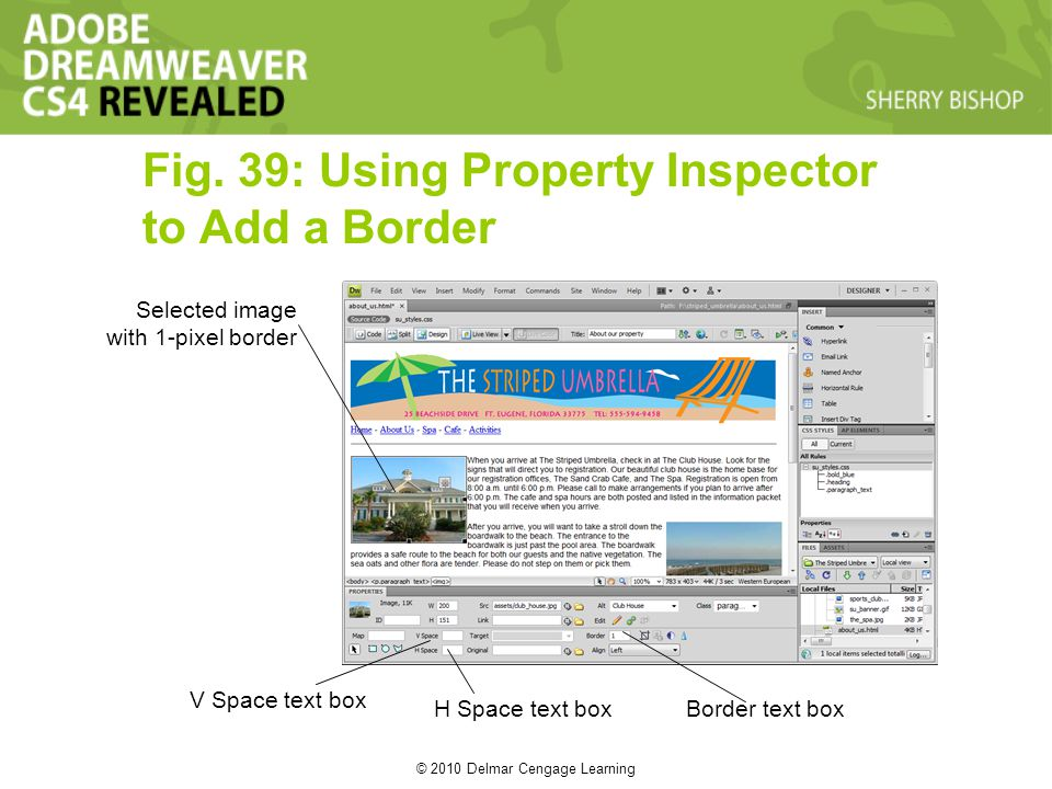 © 2010 Delmar Cengage Learning Fig. 39: Using Property Inspector to Add a Border Selected image with 1-pixel border V Space text box H Space text boxB