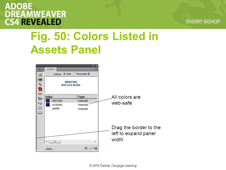 © 2010 Delmar Cengage Learning Fig. 50: Colors Listed in Assets Panel All colors are web-safe Drag the border to the left to expand panel width