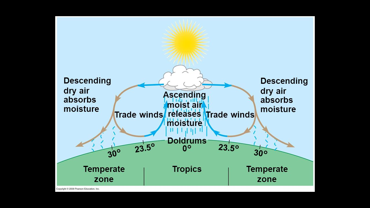Descending dry air absorbs moisture Trade winds Ascending moist air releases moisture Trade winds Descending dry air absorbs moisture Temperate zone T