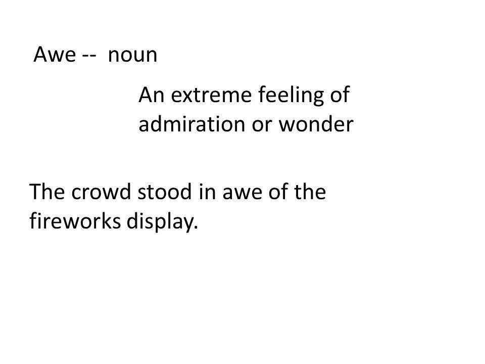 Awe -- noun An extreme feeling of admiration or wonder The crowd stood in awe of the fireworks display.