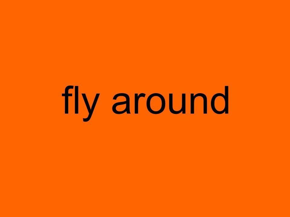 fly around