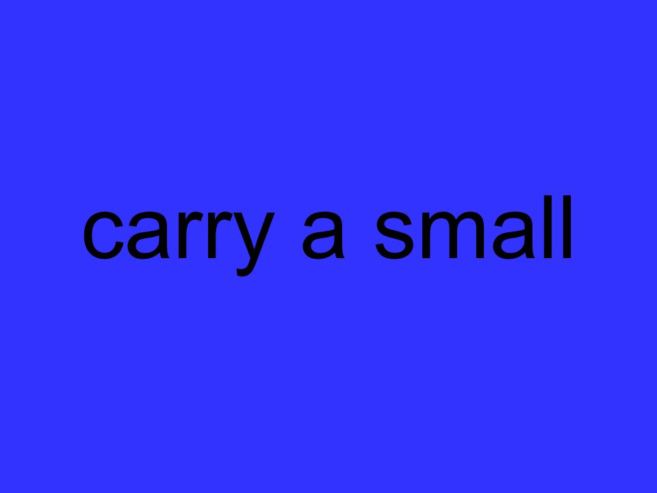 carry a small