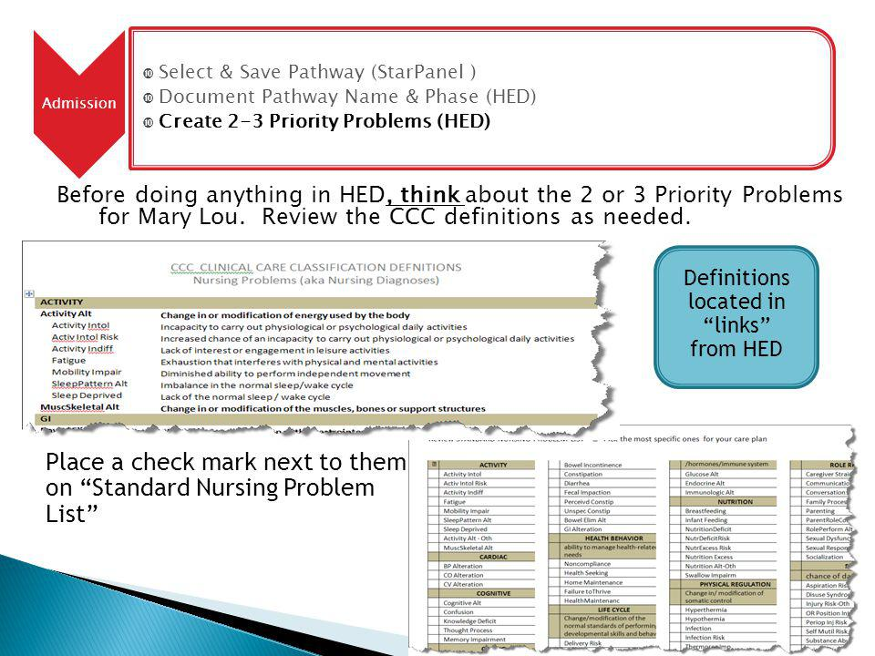 Before doing anything in HED, think about the 2 or 3 Priority Problems for Mary Lou.