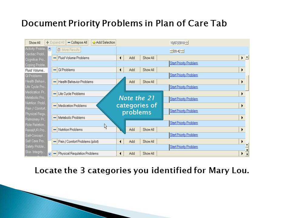 Document Priority Problems in Plan of Care Tab Locate the 3 categories you identified for Mary Lou.