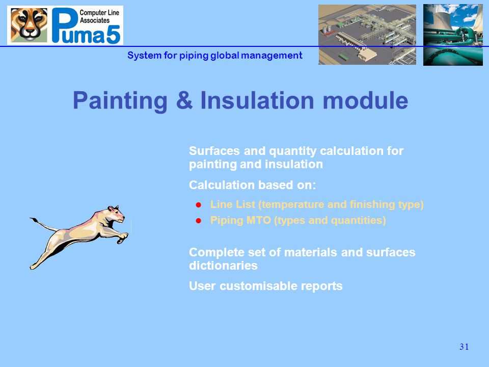 System for piping global management 31 Painting & Insulation module Surfaces and quantity calculation for painting and insulation Calculation based on: Line List (temperature and finishing type) Piping MTO (types and quantities) Complete set of materials and surfaces dictionaries User customisable reports