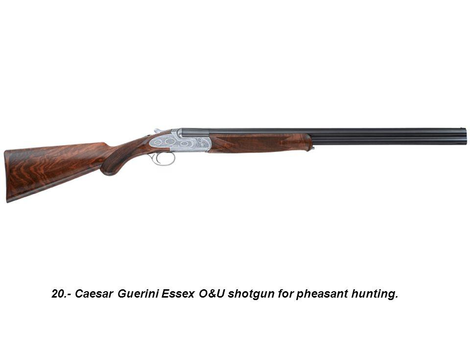 20.- Caesar Guerini Essex O&U shotgun for pheasant hunting.