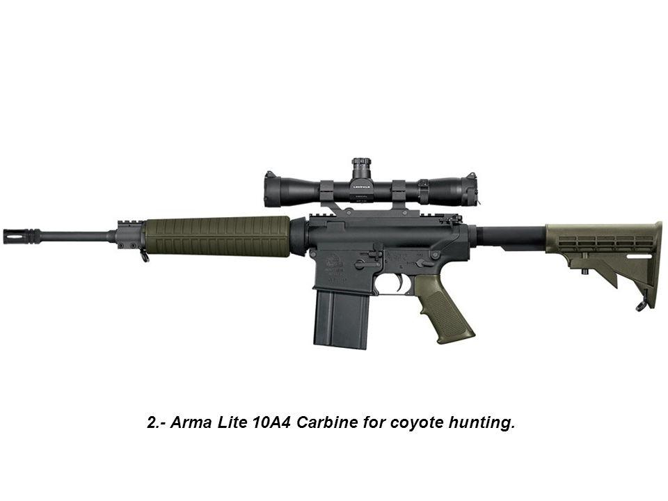 R.B. 40 Expressions of Advice 2.- Arma Lite 10A4 Carbine for coyote hunting.