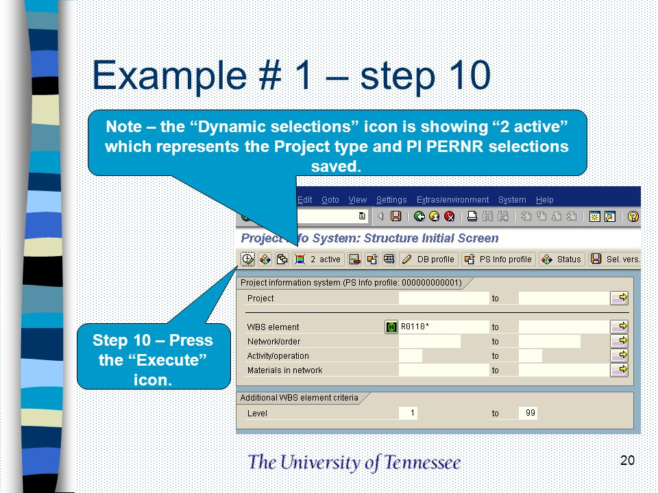 20 Example # 1 – step 10 Note – the Dynamic selections icon is showing 2 active which represents the Project type and PI PERNR selections saved. Step