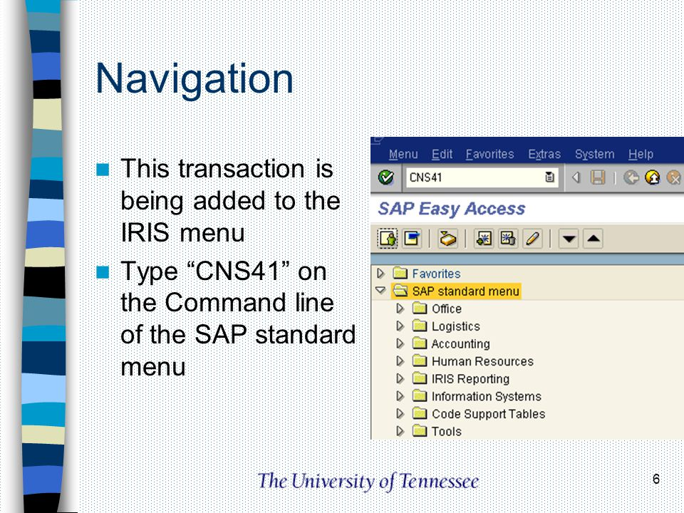 6 Navigation This transaction is being added to the IRIS menu Type CNS41 on the Command line of the SAP standard menu