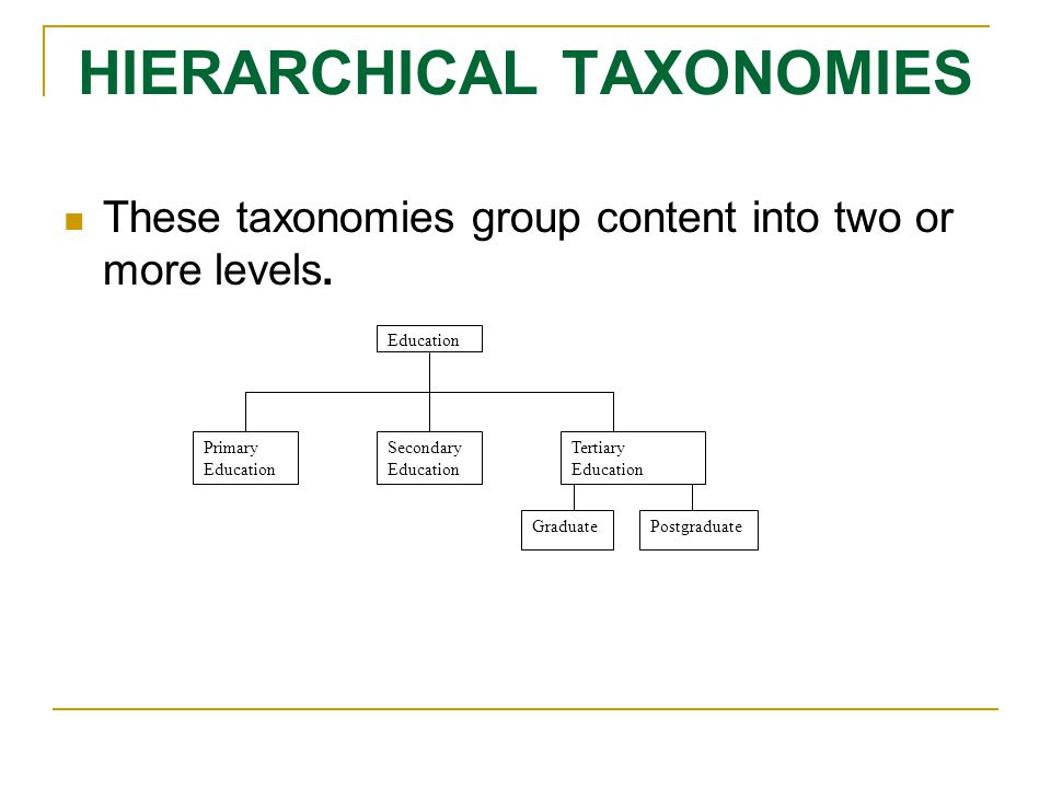 HIERARCHICAL TAXONOMIES These taxonomies group content into two or more levels.