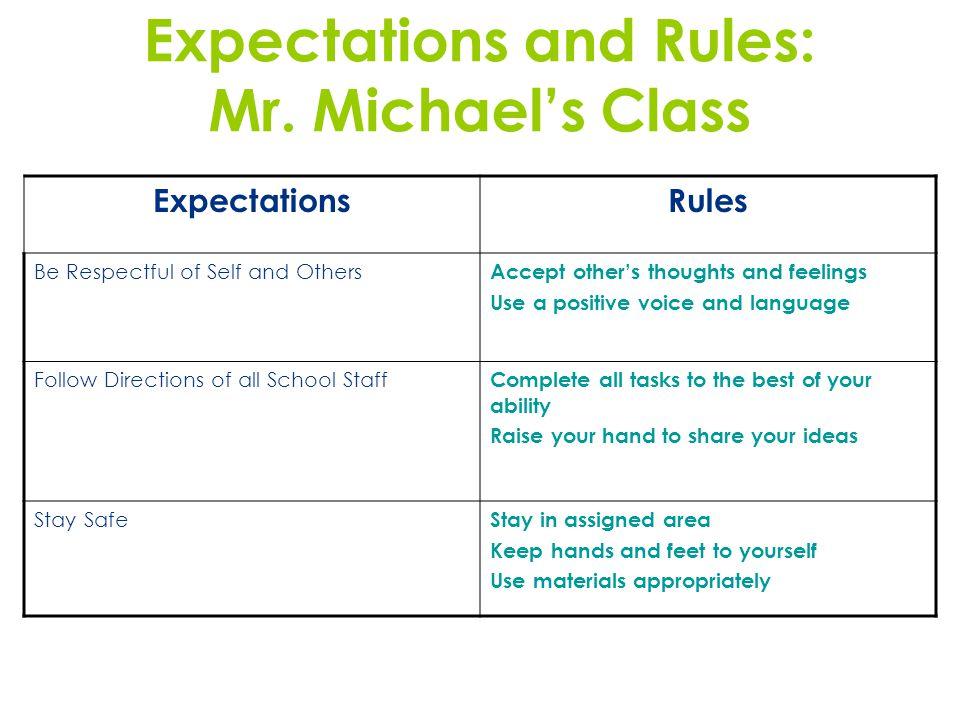Expectations and Rules: Mr. Michaels Class ExpectationsRules Be Respectful of Self and Others Accept others thoughts and feelings Use a positive voice