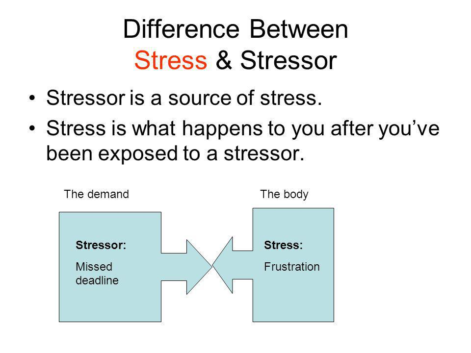 Make a list of Stressors Whats bugging you?