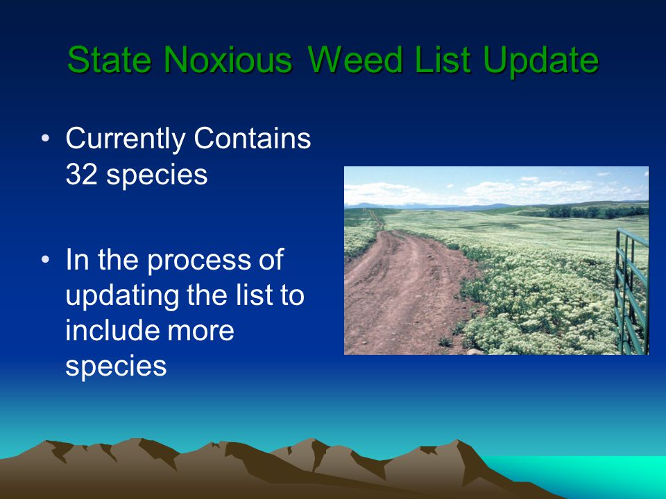 State Noxious Weed List Update Currently Contains 32 species In the process of updating the list to include more species