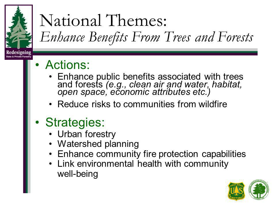 National Themes: Enhance Benefits From Trees and Forests Actions: Enhance public benefits associated with trees and forests (e.g., clean air and water, habitat, open space, economic attributes etc.) Reduce risks to communities from wildfire Strategies: Urban forestry Watershed planning Enhance community fire protection capabilities Link environmental health with community well-being