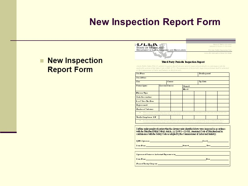 New Inspection Report Form