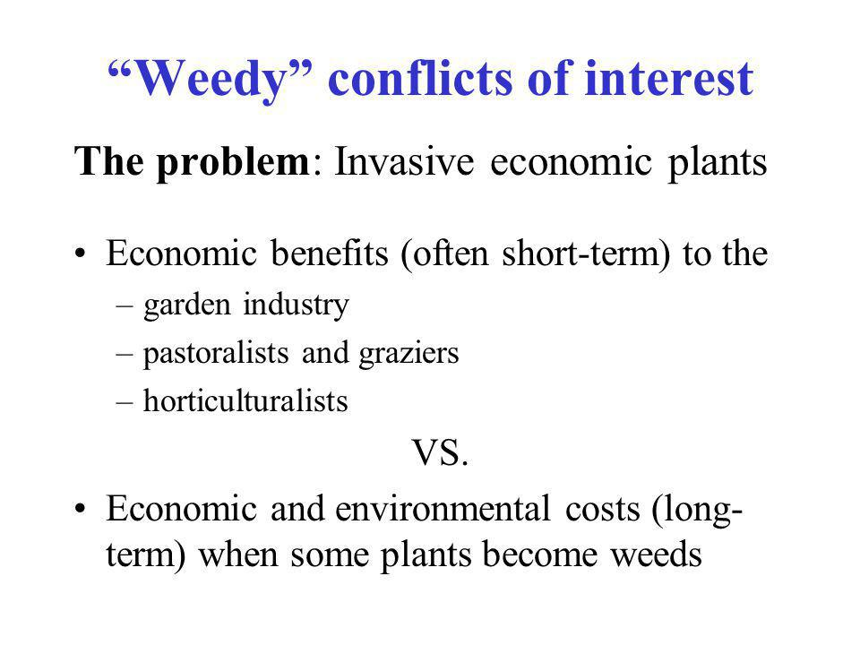 Weedy conflicts of interest The problem: Invasive economic plants Economic benefits (often short-term) to the –garden industry –pastoralists and graziers –horticulturalists VS.