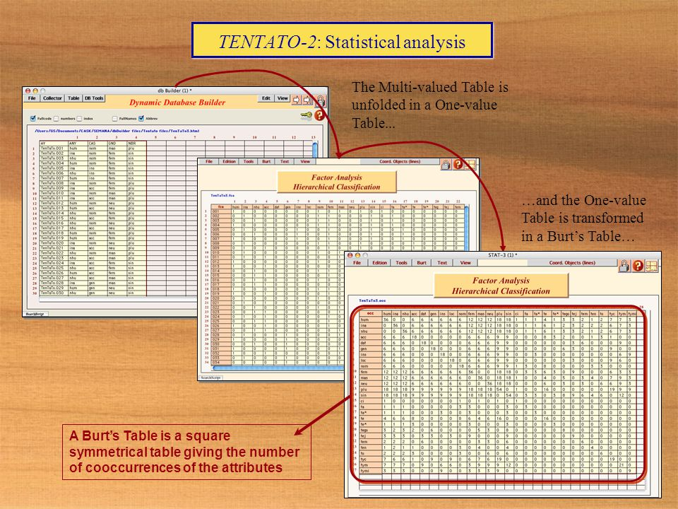 TENTATO-2: Statistical analysis The Multi-valued Table is unfolded in a One-value Table...