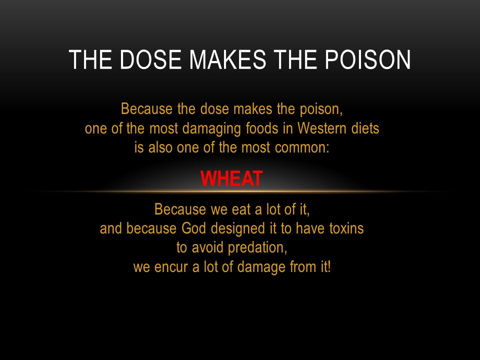 Because the dose makes the poison, one of the most damaging foods in Western diets is also one of the most common: WHEAT Because we eat a lot of it, a