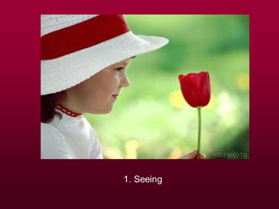 1. Seeing