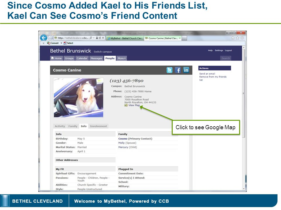 Welcome to MyBethel, Powered by CCBBETHEL CLEVELAND Since Cosmo Added Kael to His Friends List, Kael Can See Cosmos Friend Content Click to see Google
