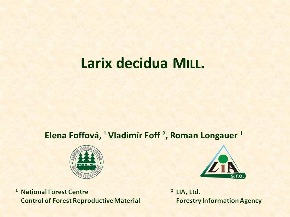 Larix decidua M ILL.