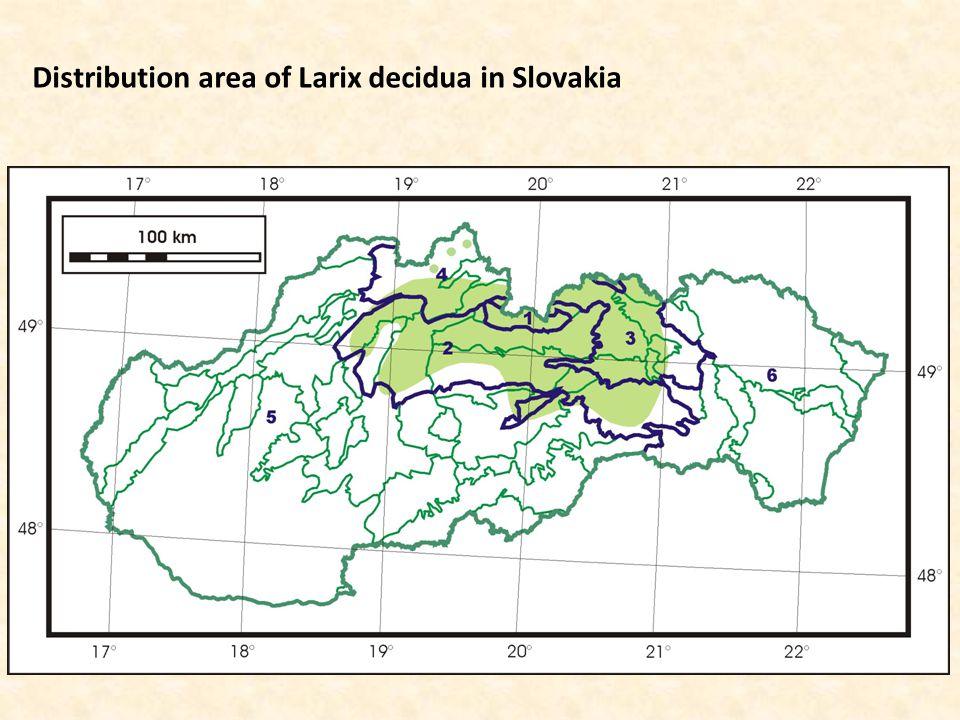 Distribution area of Larix decidua in Slovakia
