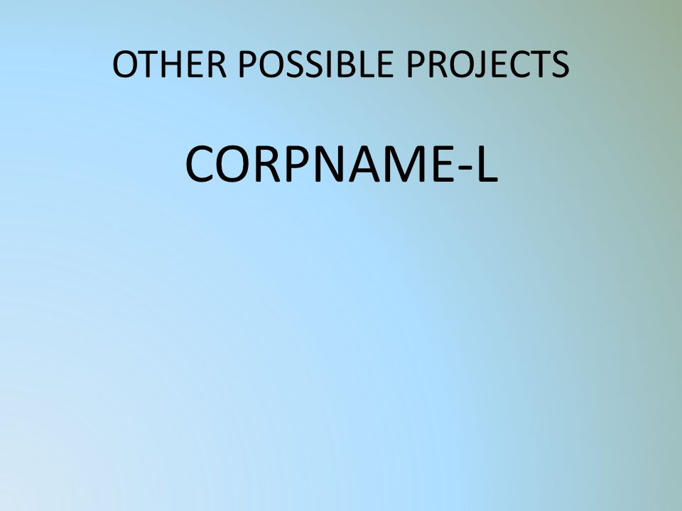 OTHER POSSIBLE PROJECTS CORPNAME-L