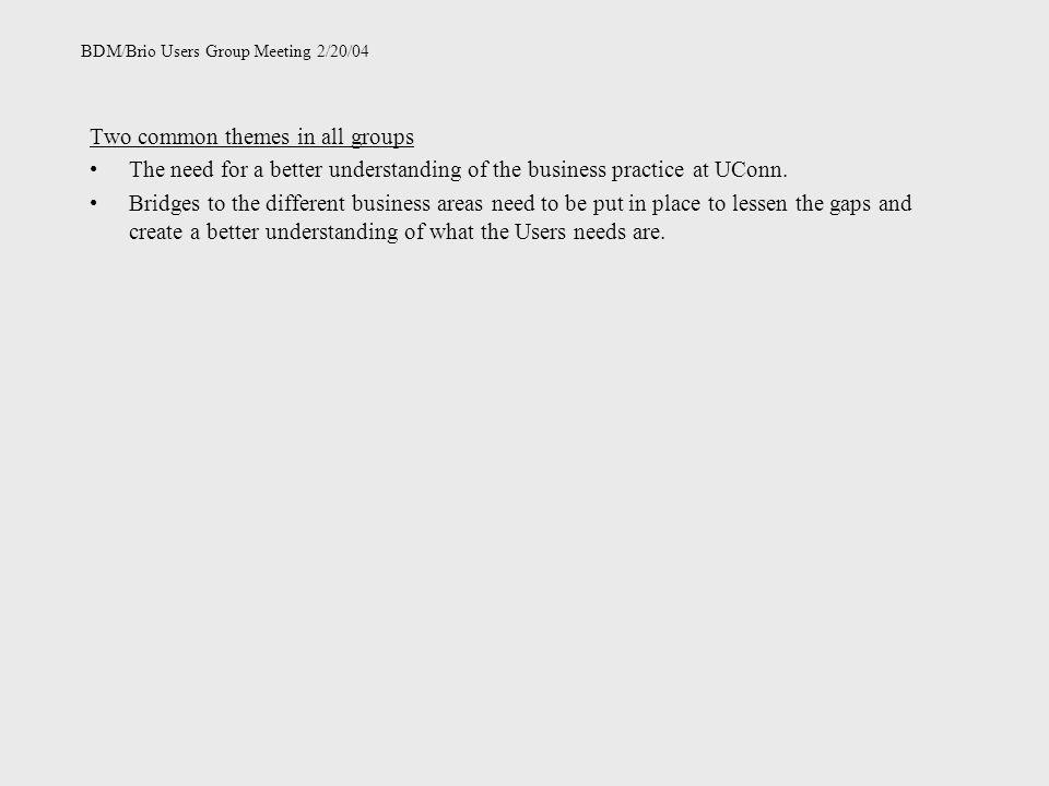BDM/Brio Users Group Meeting 2/20/04 Two common themes in all groups The need for a better understanding of the business practice at UConn. Bridges to