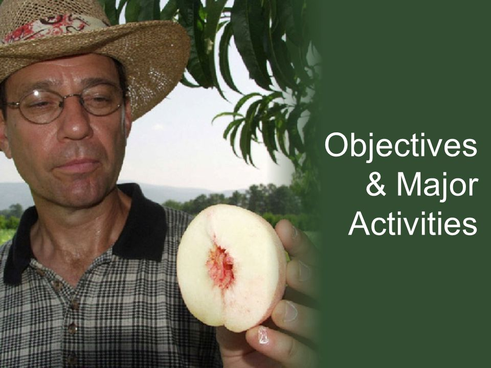 Objectives & Major Activities