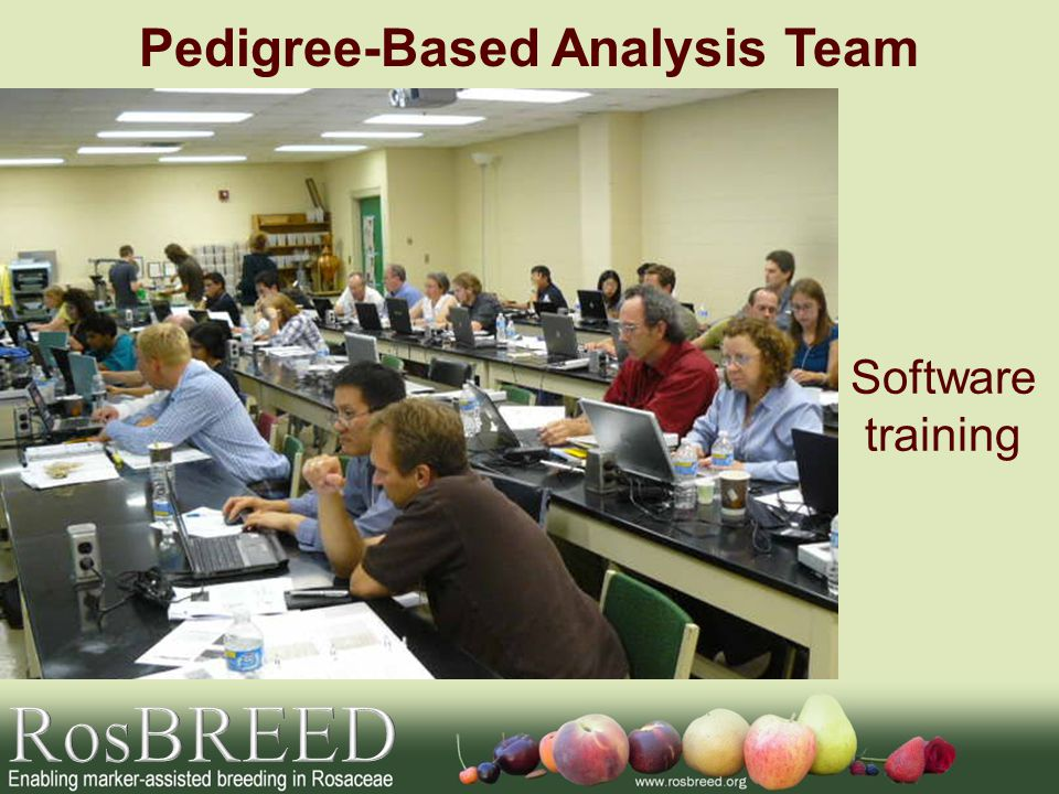Pedigree-Based Analysis Team Software training