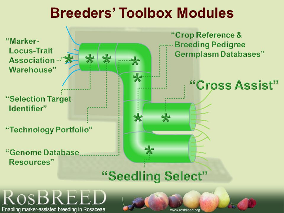 Breeders Toolbox Modules