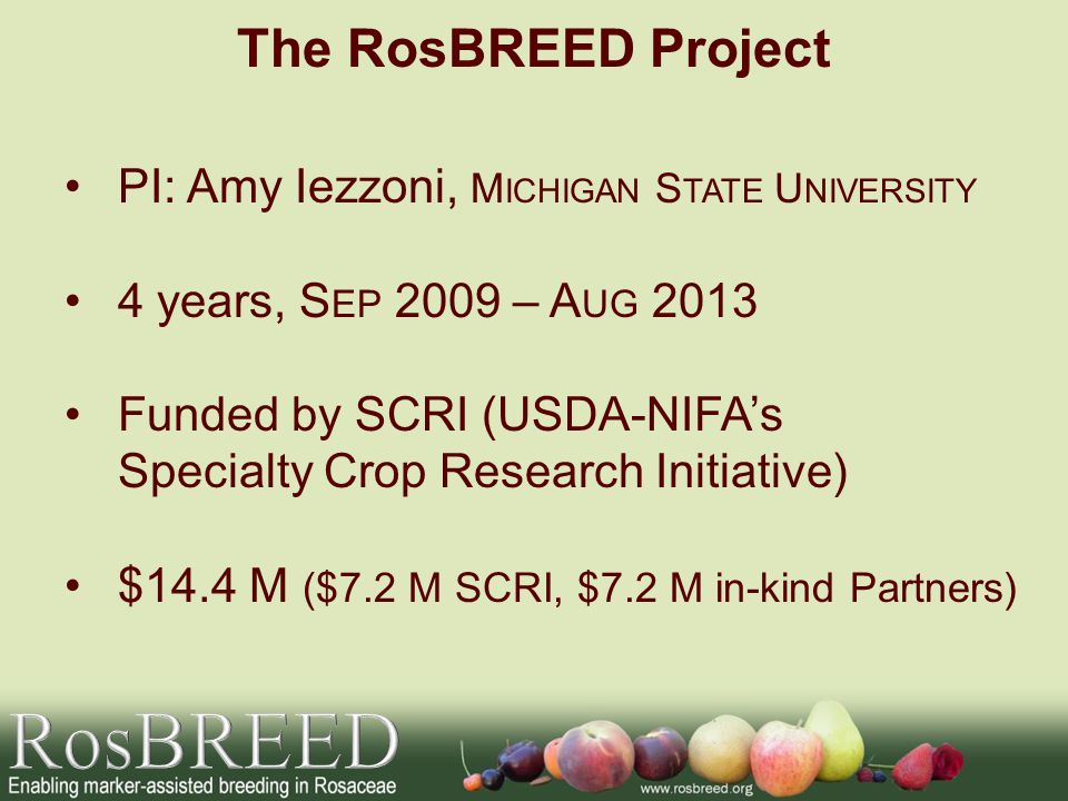 U.S.-wide and international collaboration 10 Teams 32 members of 3 Advisory Panels (S TAKEHOLDER, E XTENSION, S CIENTIFIC ) The RosBREED Project S OCIO -E CONOMICS I NDUSTRY B REEDING P EDIGREE -B ASED A NALYSIS A DMINISTRATION B REEDERS T OOLBOX G ENOMICS G ENOTYPING MAB P IPELINE E XTENSION