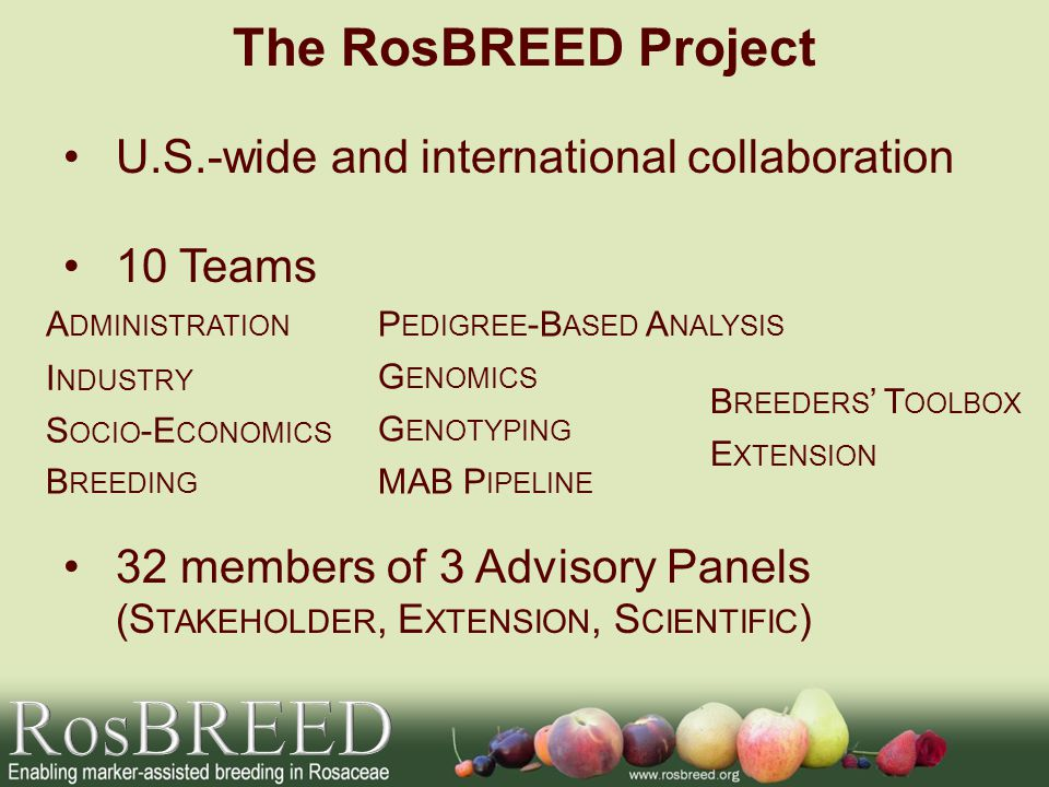 U.S.-wide and international collaboration 10 Teams 32 members of 3 Advisory Panels (S TAKEHOLDER, E XTENSION, S CIENTIFIC ) The RosBREED Project S OCI