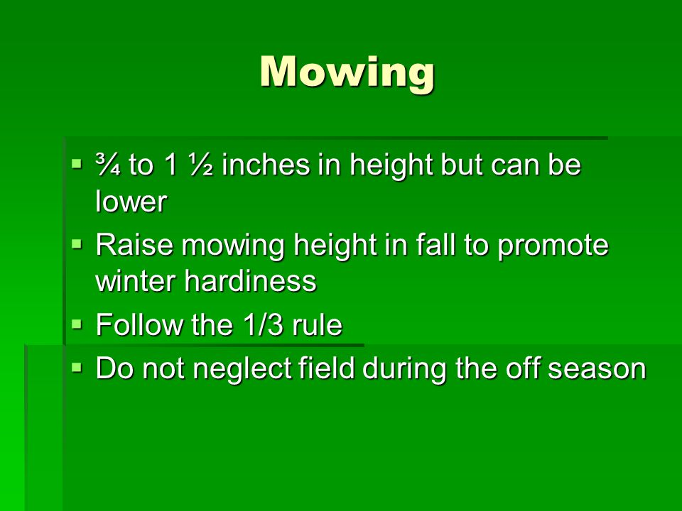 Mowing ¾ to 1 ½ inches in height but can be lower ¾ to 1 ½ inches in height but can be lower Raise mowing height in fall to promote winter hardiness R
