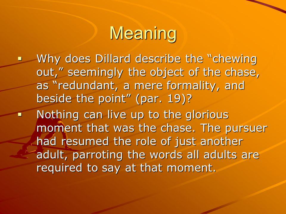 Meaning Why does Dillard describe the chewing out, seemingly the object of the chase, as redundant, a mere formality, and beside the point (par.