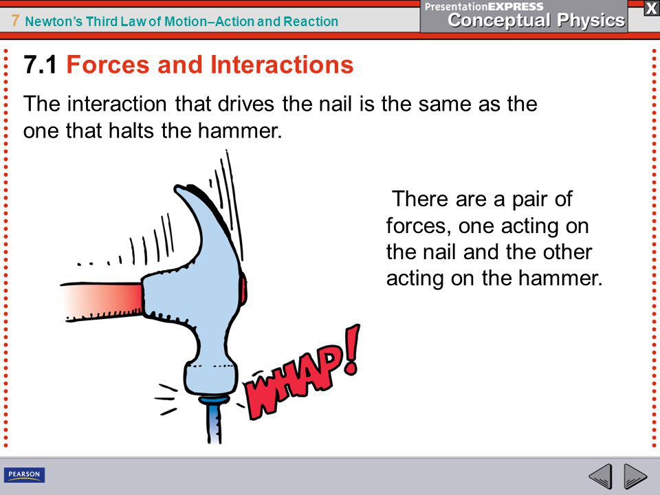 7 Newtons Third Law of Motion–Action and Reaction The interaction that drives the nail is the same as the one that halts the hammer.